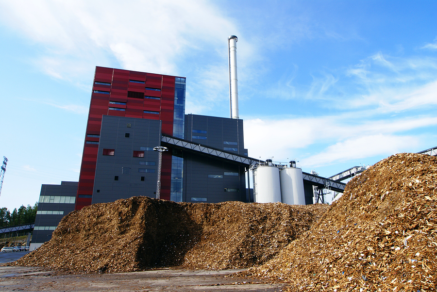 Wood Biomass Energy ~ Bio power shows competitive edge alternative energy stocks