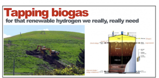 Biogas as a source of hydrogen