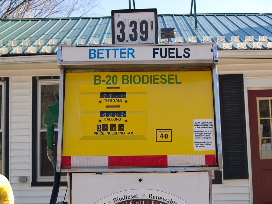 Biodiesel pump