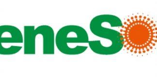 ReneSola SOL logo