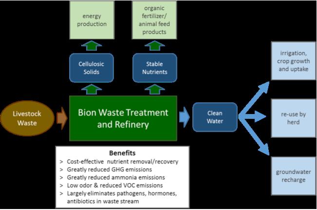 Bion Tech platform