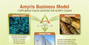 AMRS 2010 Business model