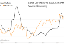 6 month BDI/SALT chart
