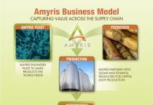 AMRS 2010 Business model